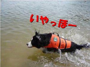 1年ぶりの海水浴!