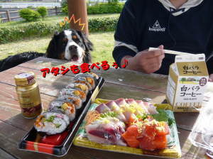 魚、さかな、サカナ、魚を食べよう♪