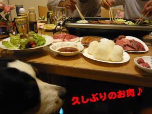 美味しそうな肉だわ♪