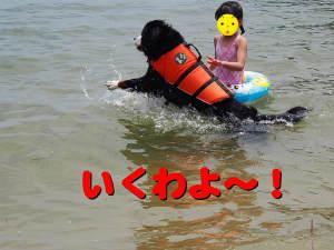 泳ぐ時のクセ。。。