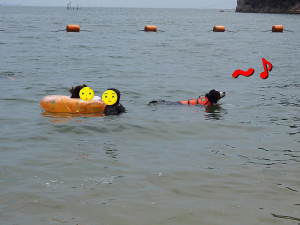 沖からの泳ぎはスイスイなのよ♪