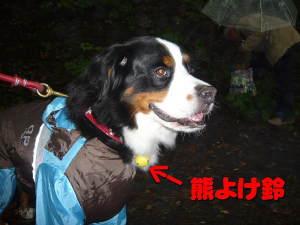 パトロール犬