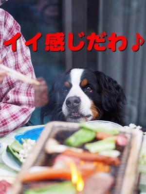 早く食したい!