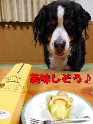 唐芋レアチーズケーキ♪